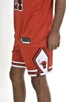 NBA NIKE CHICAGO BULLS  SWGMN SHORT ROAD
