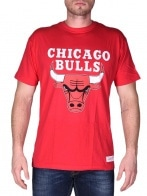 CHICAGO BULLS TEAM LOGO TS