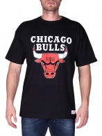 CHICAGO BULLS TEAM LOGO T-SHIRT